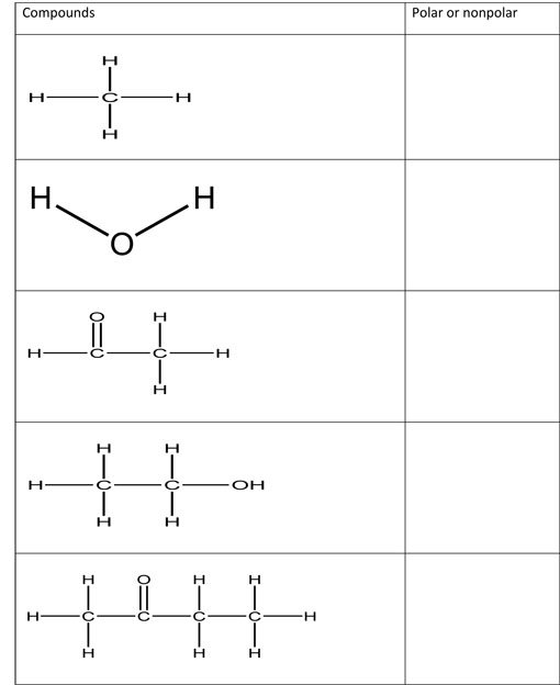 Polarity Of Molecules Worksheet Worksheets For All