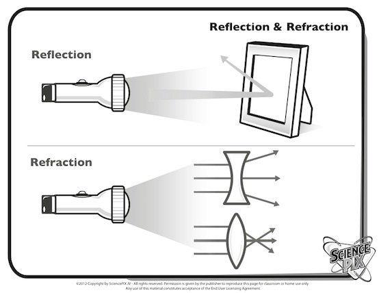 Reflection Worksheet Fun