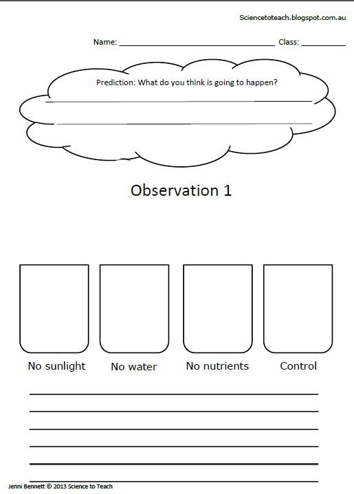 Science Worksheets For Grade 1 On Plants