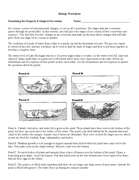 Succession Worksheet Answers Ecological Succession Worksheet