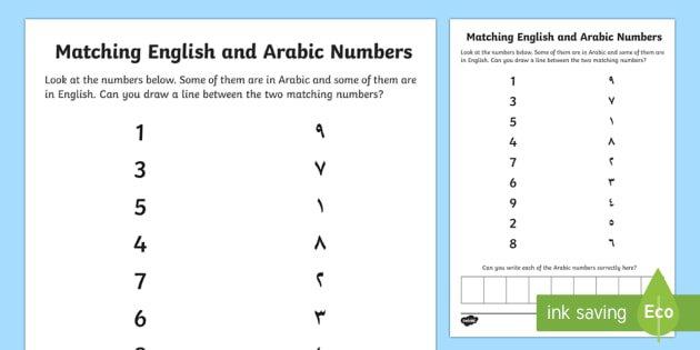Uae Ey English And Arabic Number Matching Worksheet   Activity