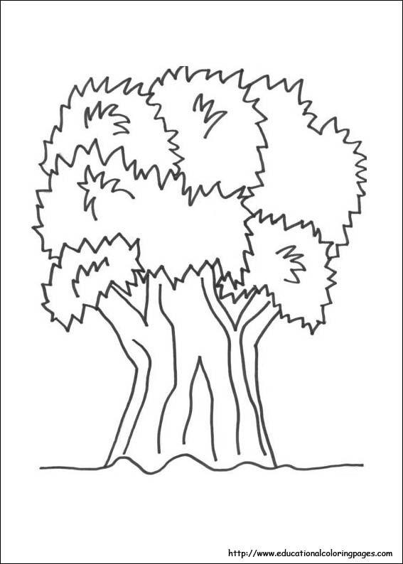 Ukg Drawing Worksheets