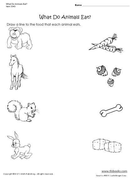 What Do Animals Eat   Worksheet