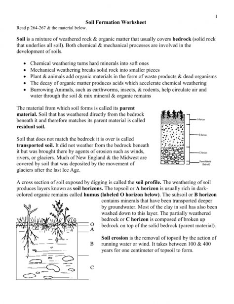 Worksheet Template   Worksheet   Weathering Vs Erosion Perspective