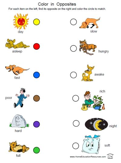 12 Pages Of Opposites Fun! Free Printable Worksheet Packet For