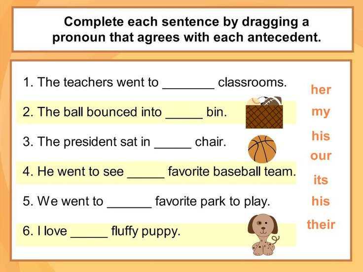 27 Best Pronoun