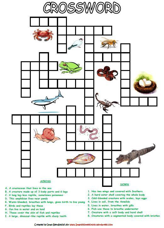 Animal Classification Activity Worksheets