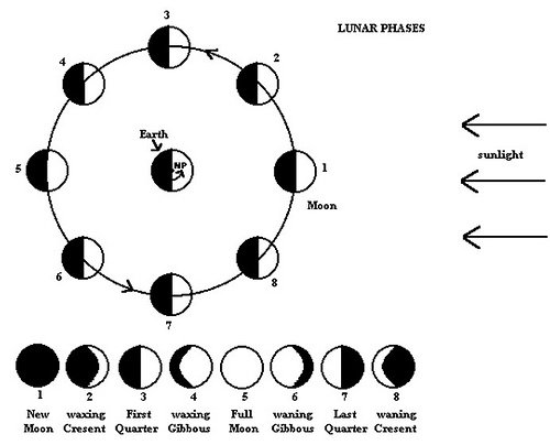 Blank Moon Phases Worksheet The Best Worksheets Image Collection