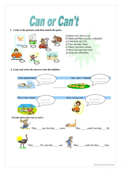 Can Or Can't Worksheet