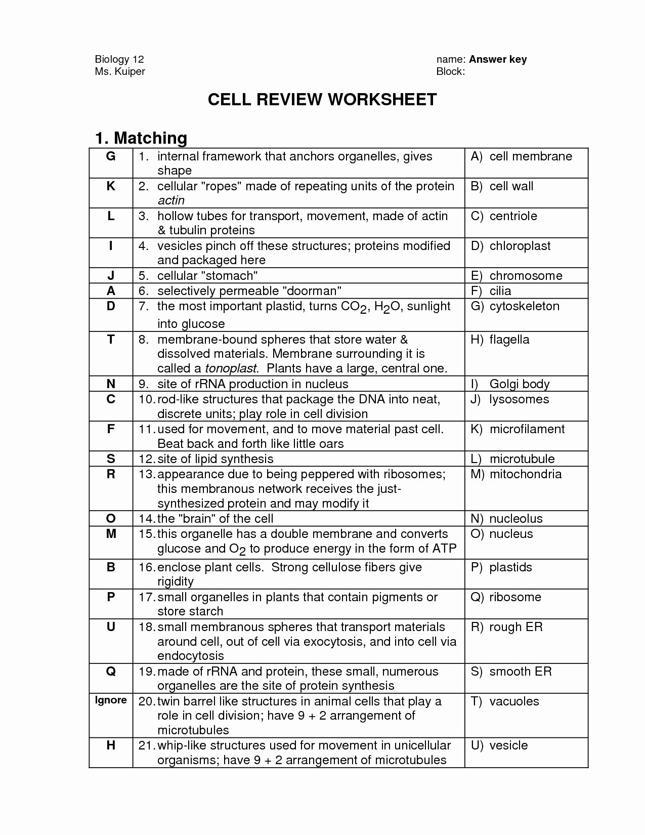 Cell Organelle Worksheet Answers The Best Worksheets Image