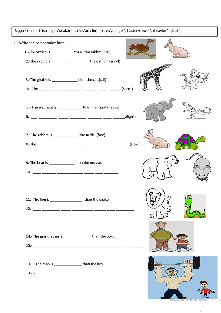 Collection Of Comparative Adjectives Worksheets For Kindergarten
