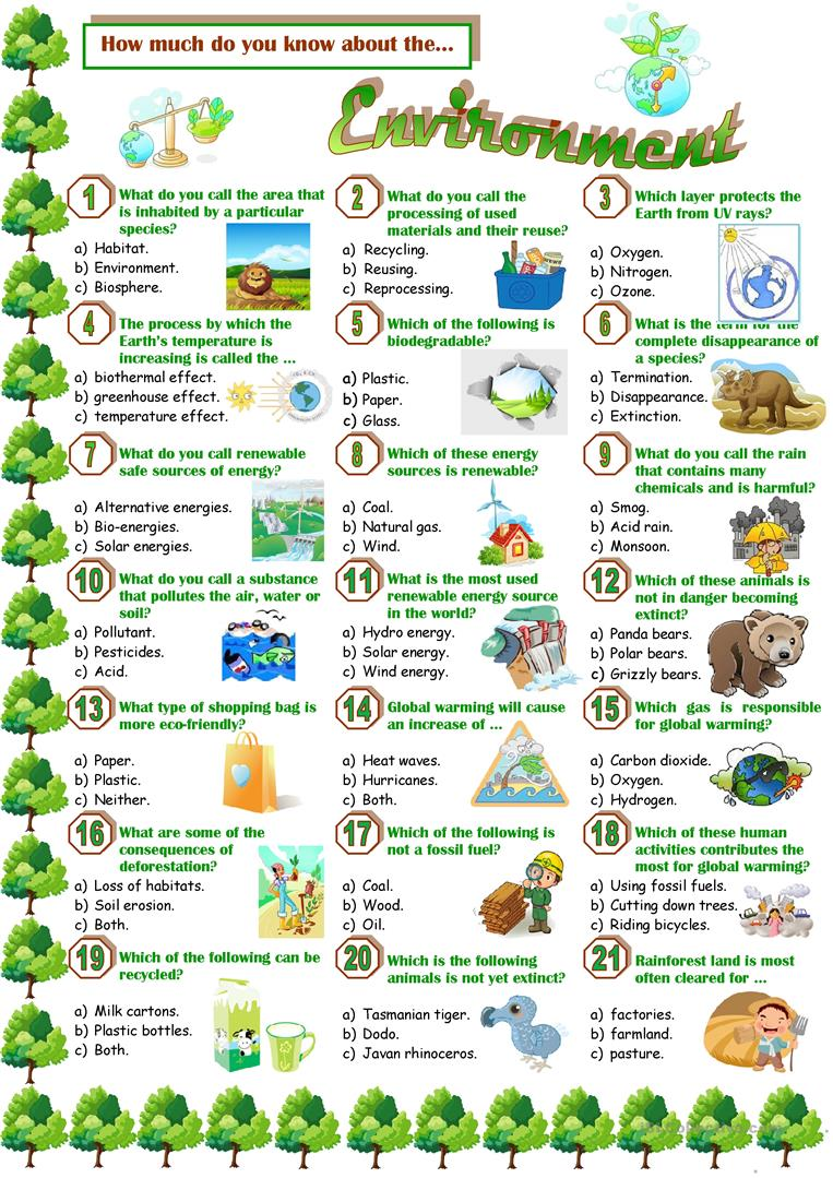 Environmental Worksheets