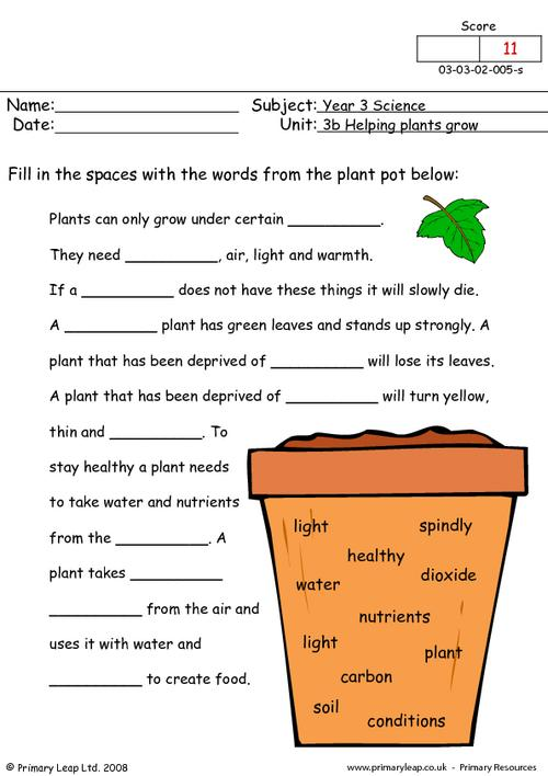 Fair Year 3 Science Worksheets Free For Free Science Printable