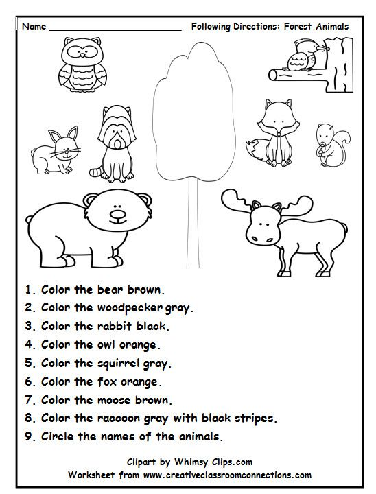 Following Directions Is Fun With This Delightful Forest Animal