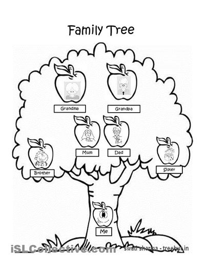 Free Worksheets Family Tree