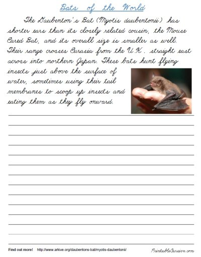Handwriting Worksheets For Teenagers The Best Worksheets Image