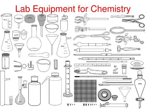 Identifying Lab Equipment Worksheet The Best Worksheets Image