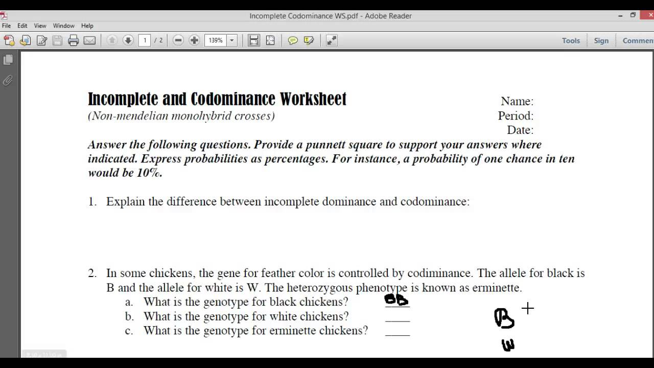 Incomplete And Codominance Worksheet Answers Com