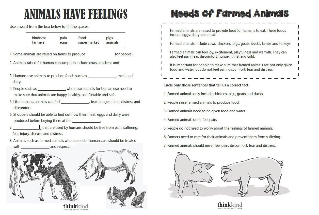 Kids  Basic Science Worksheets  Scientific Method Worksheet
