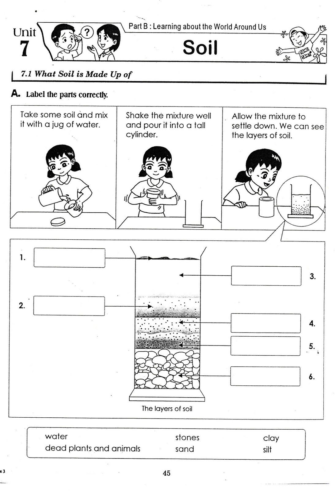 Kids  Worksheets For Grade 3 Science  Worksheets For All And Share