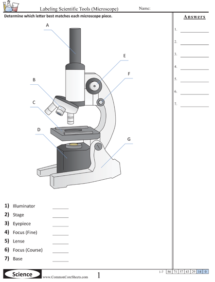 Parts Of A Microscope Worksheet Parts Of The Microscope Worksheet