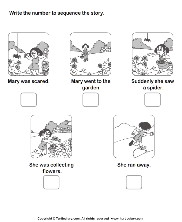 Picture Sequence Worksheets