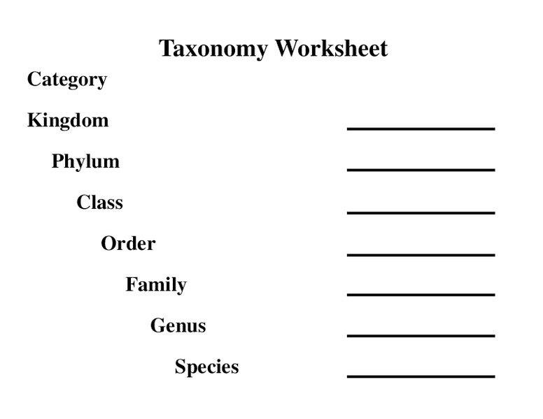 Taxonomy Classification Worksheet The Best Worksheets Image