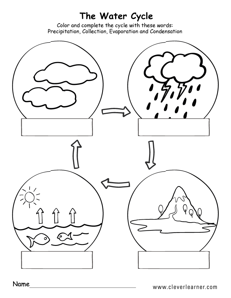 Water Cycle Printable  2797013