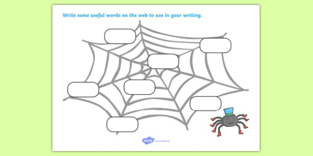 Word Web Worksheet   Activity Sheet