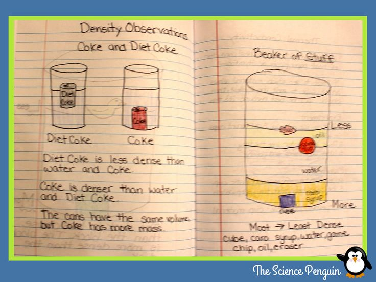 89 Best Science Project Images On Free Worksheets Samples