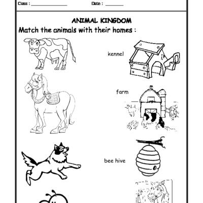 Animal Homes Worksheets