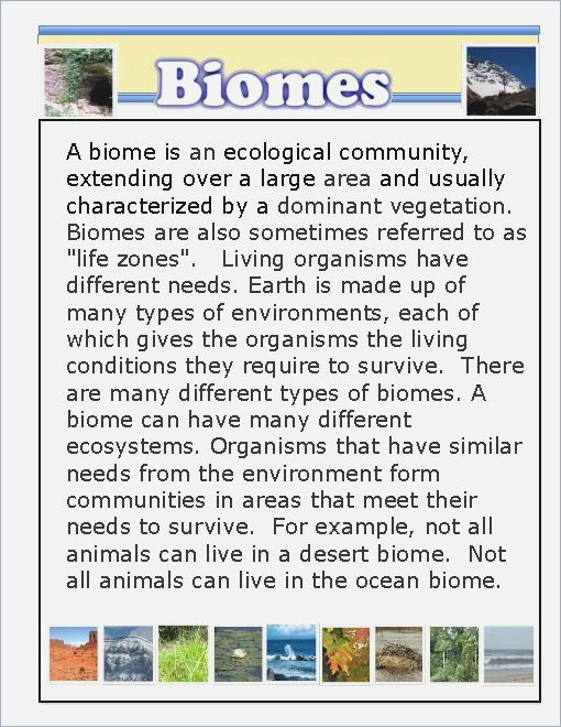 Biomes Worksheets For Middle School On Terrestrial Biomes Study