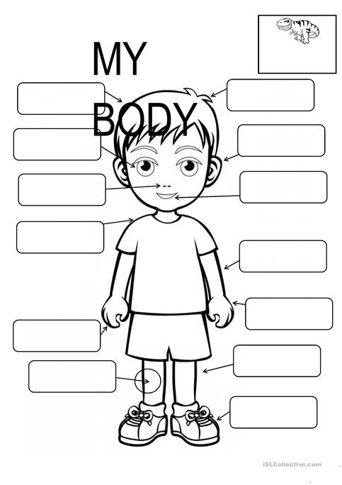 Body Parts Blank Worksheets