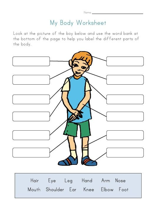 Body Parts Worksheet For Kids