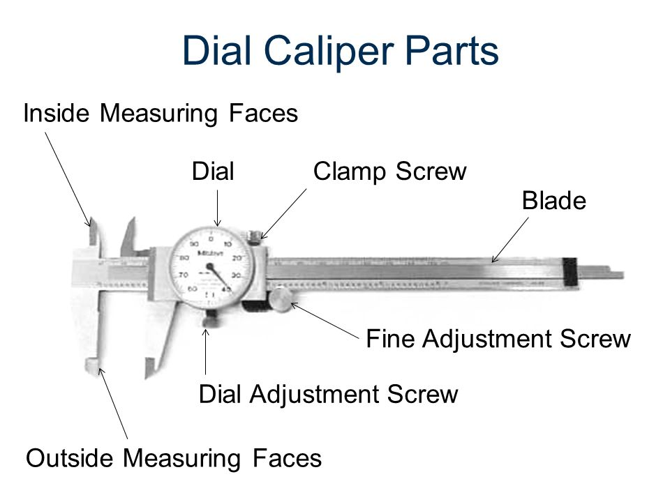 Dial caliper worksheets ibookread PDF