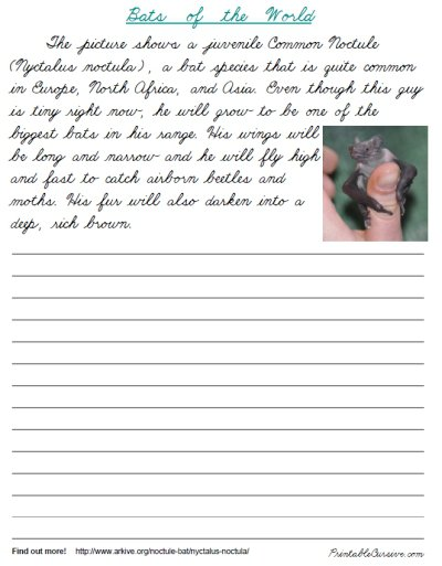 Collection Of Cursive Handwriting Practice Worksheets For Adults