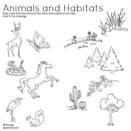 Collection Of Kindergarten Animal Habitat Worksheets