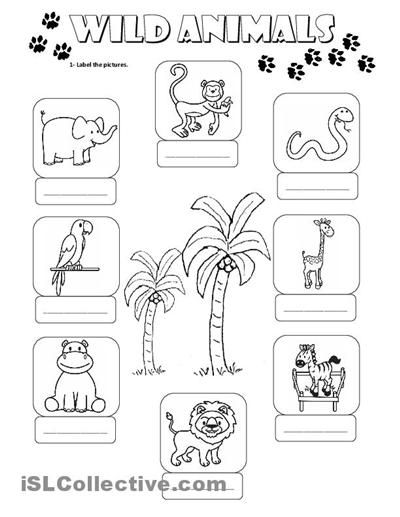 Collection Of Printable Animal Worksheets For Kindergarten