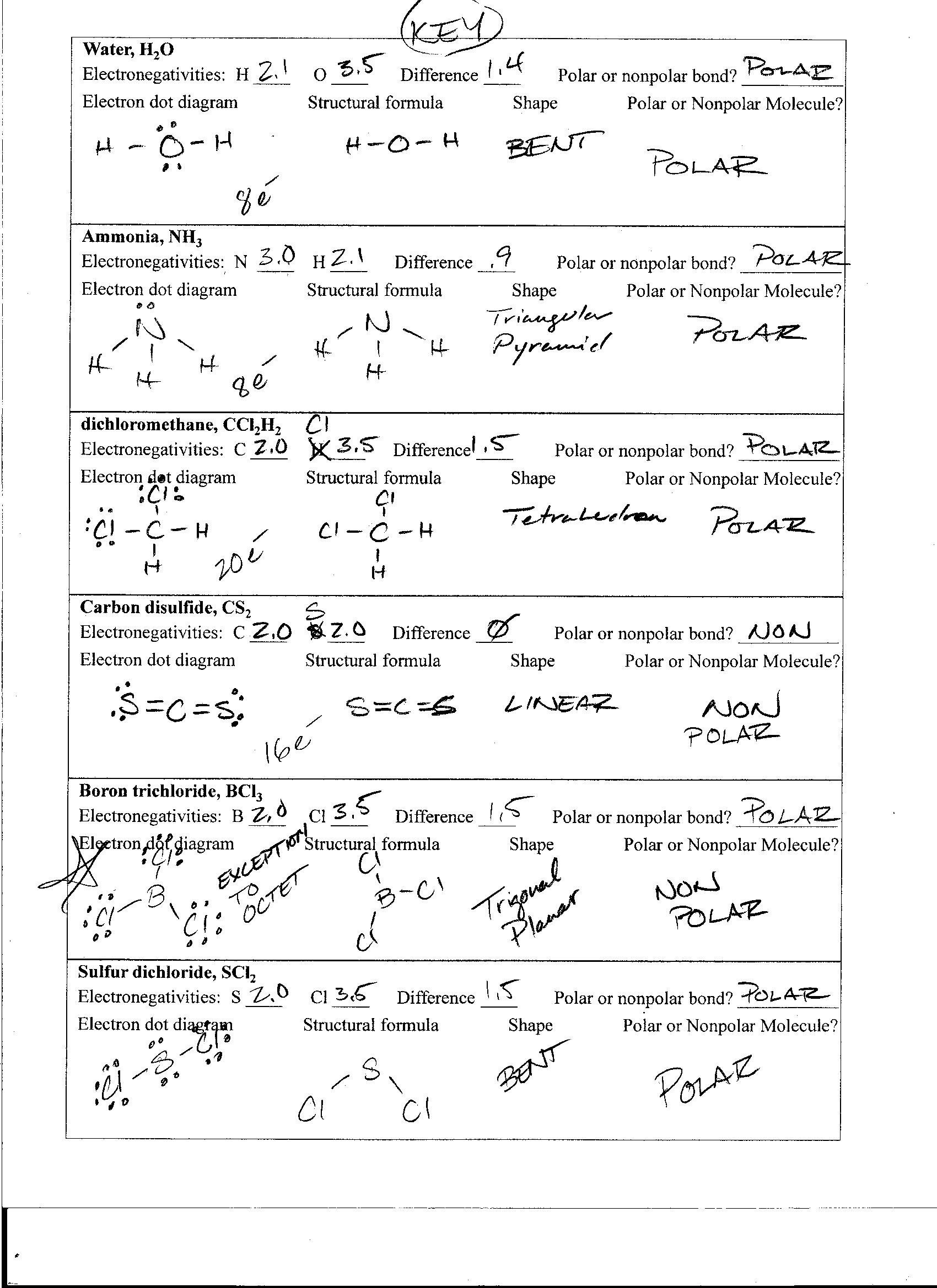 Collection Of Worksheet Polarity Of Bonds Key