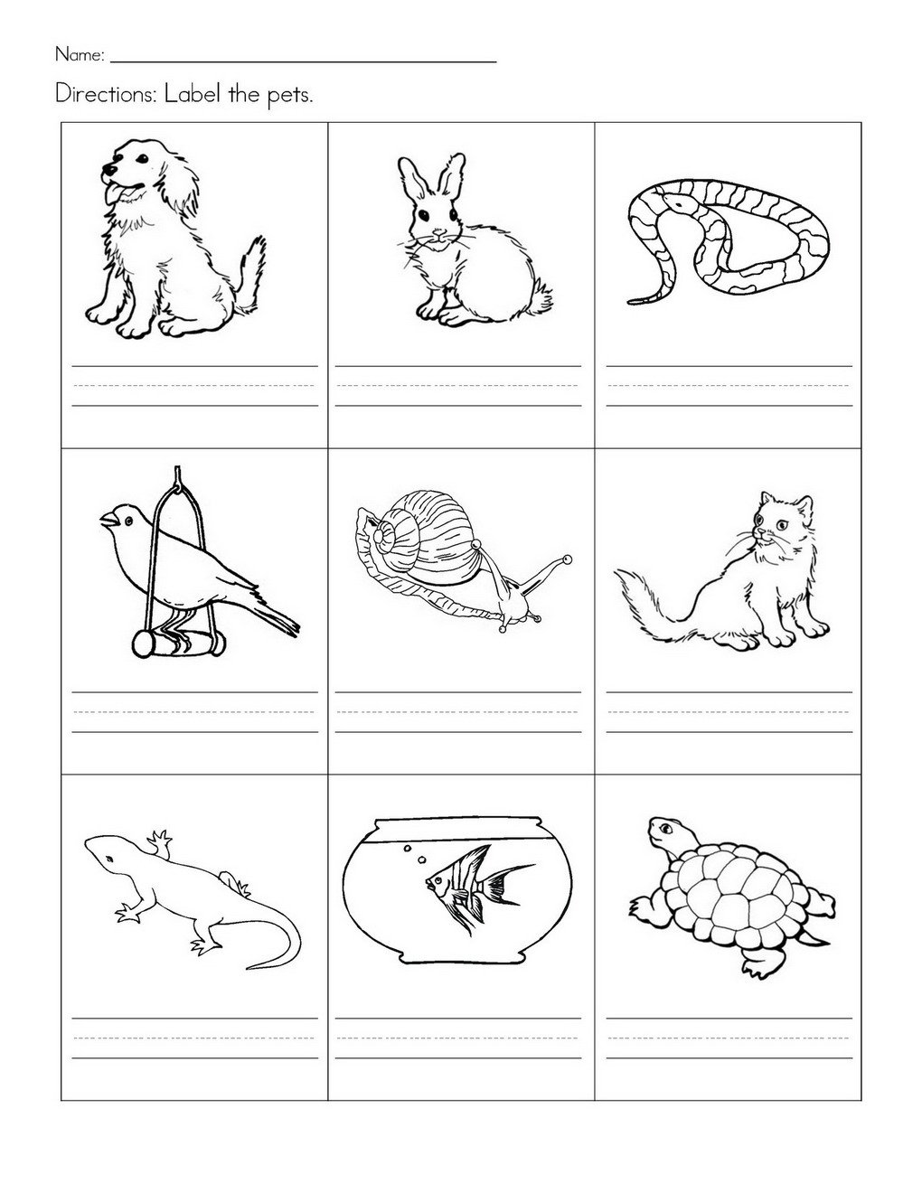 Collection Of Worksheets For Kindergarten About Pets