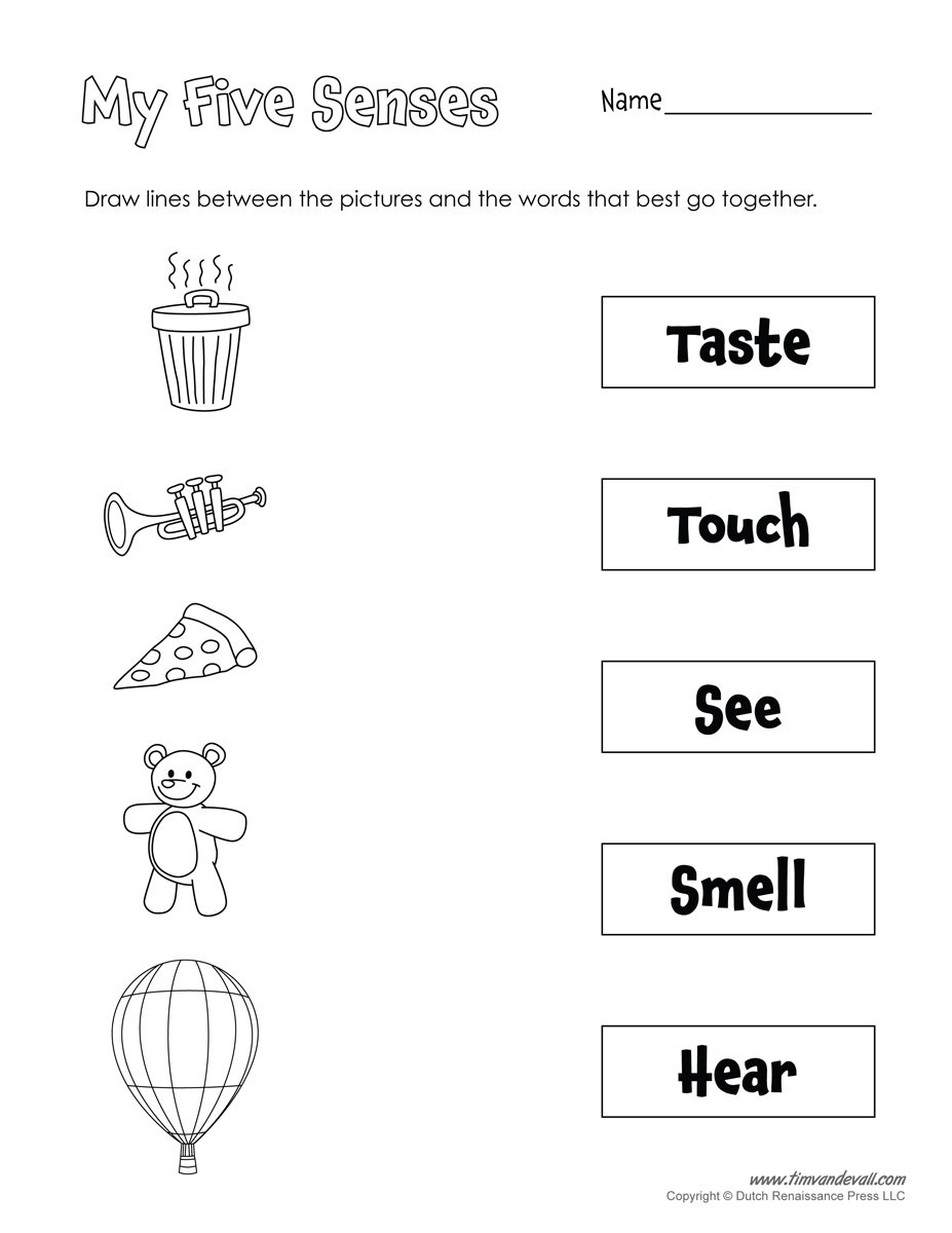 Collection Of Worksheets For Preschoolers On The Five Senses