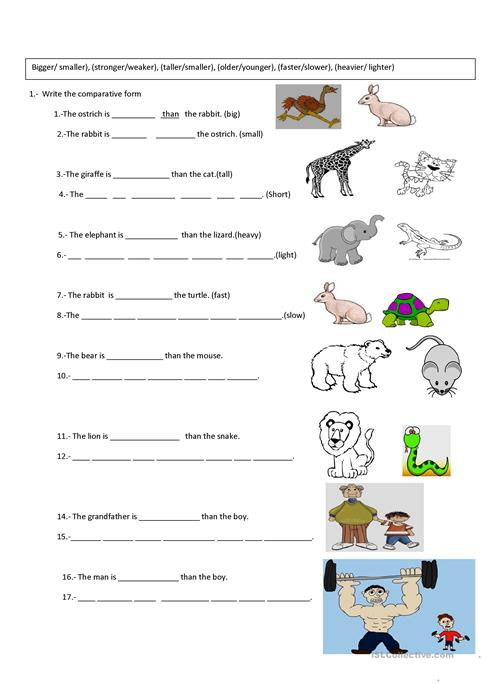 Comparative Exercise Worksheet