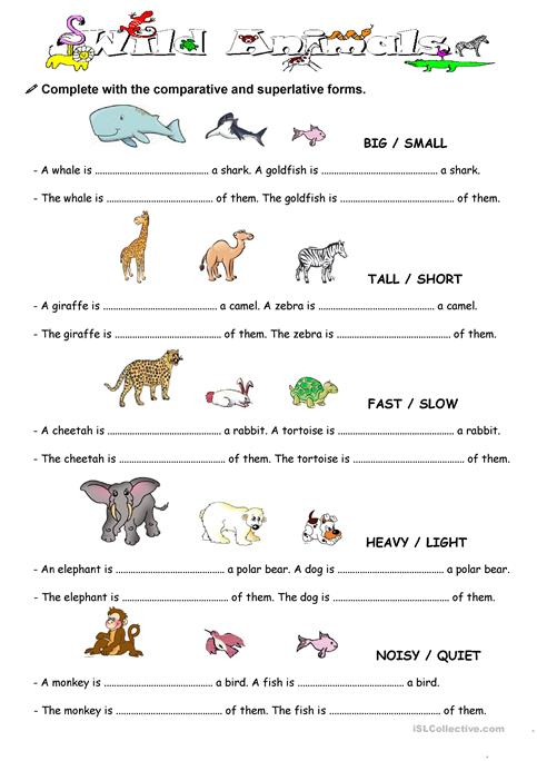 Comparison With Animal Worksheet