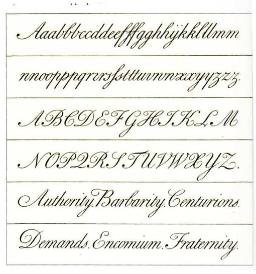 Copperplate Alphabet Worksheet The Best Worksheets Image