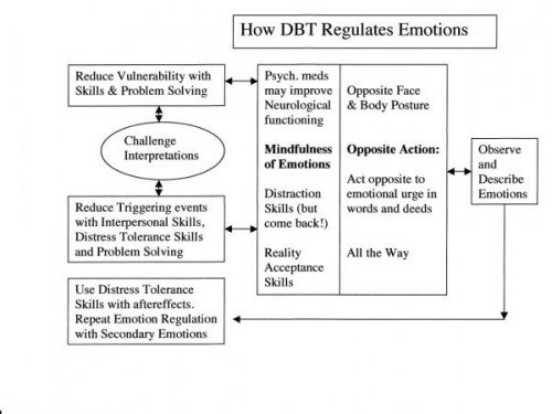 Dbt Emotion Regulation Handouts The Best Worksheets Image