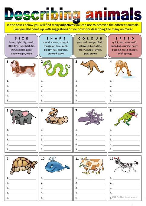 Describing Animals (adjectives) Worksheet