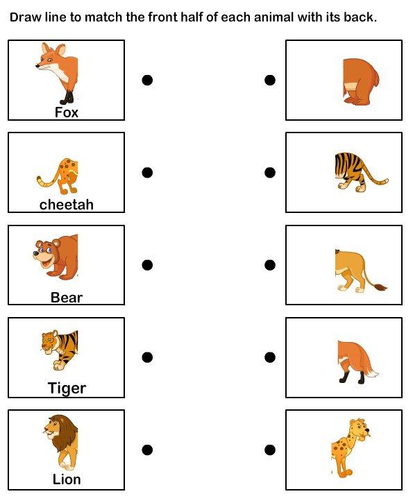 Esl Animal Worksheets