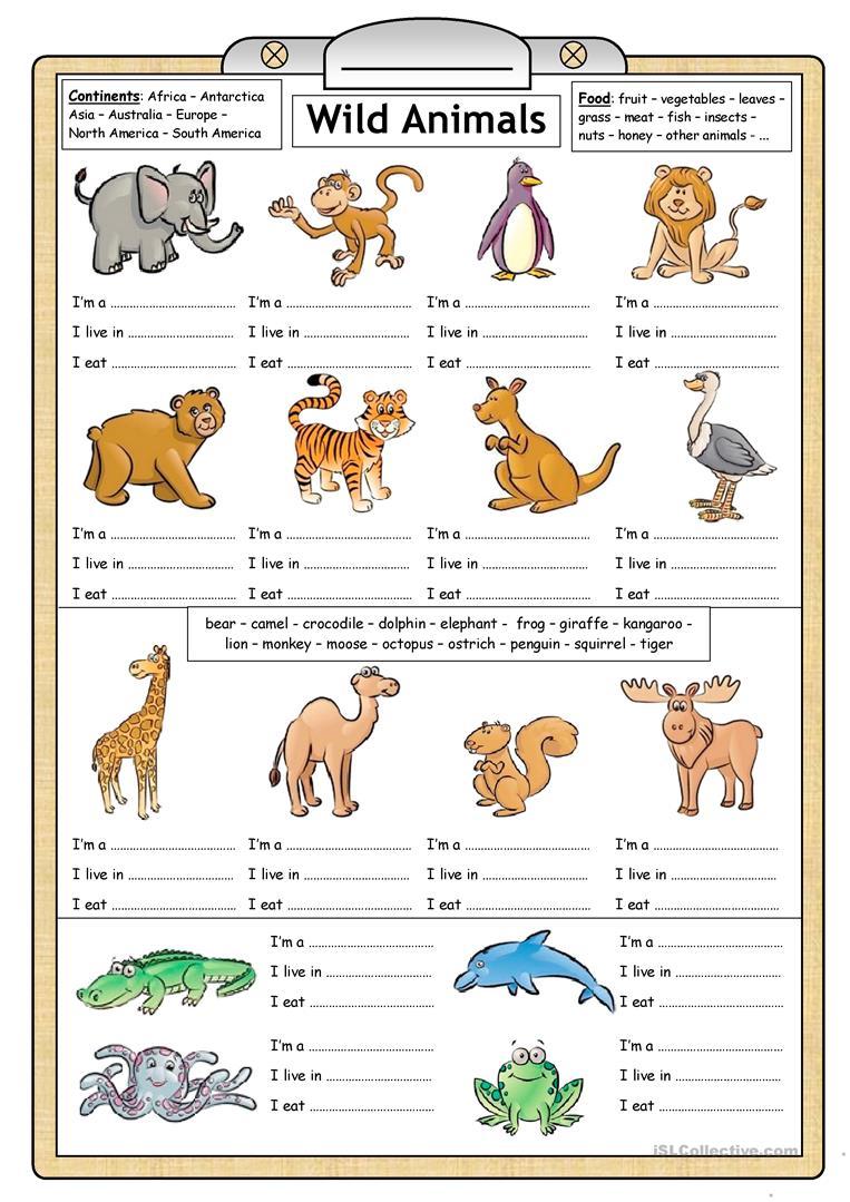 Esl Kindergarten Animal Worksheets 275504