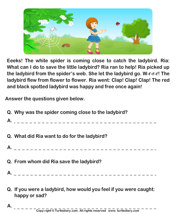 Fill In The Blanks From Comprehension Ria And Ladybird Worksheet