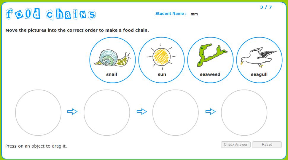 Food Chain Worksheet 1st Grade 200492